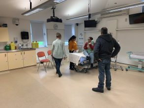 Photo of perinatal Mental Health Simulation training in action
